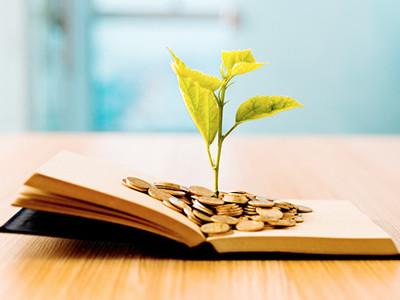 Libro con moneda y plantas